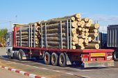 picture of logging truck  - The loaded truck with logs on parking area - JPG