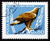 Postage Stamp Romania 1968 Golden Eagle, Bird Of Prey
