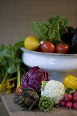 frisch geerntete Bio-Früchten und Gemüse