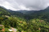 Sri Lanka. Nuwara Eliya. Natural Landscape In The Tea Plantations