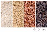 A collage of rice varieties of risotto, brown basmati, red camargue and wild thai rice.