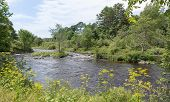 picture of northeast  - This watershed area is in Northeast Maine and is surrounded by green trees and vegetation - JPG