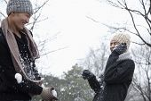 picture of snowball-fight  - Friends Having a Snowball Fight - JPG
