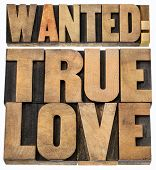 wanted true love - romance concept -isolated text in letterpress wood type blocks