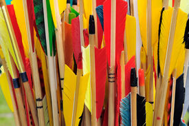 stock photo of fletching  - A group of arrow fletchings in different colors.