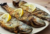 Three Delicious Grilled Trouts
