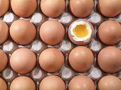 Постер, плакат: Яйца