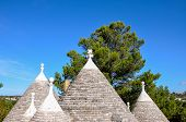 Cone Roofs Of A Trullo, Cisternino (italy)