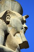 picture of ramses  - Ramses is the most well known pharaoh in Egypt - JPG