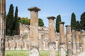 Line Of Columns By Grass Lawn In Pompeii