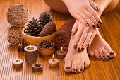 beautiful brown manicure and pedicure on the brown background