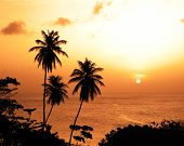 image of west indies  - Great Courland bay at sunset Tobago Trinidad and Tobago Caribbean West Indies - JPG