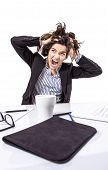 image of pulling hair  - Portrait of crazy stressed young business woman screaming and pulling her hair over white background - JPG