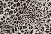 Texture Of Knitted Fabric With A Leopard Pattern