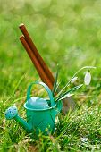 time for garden, decorative small gardening tools and snowdrops  on grass