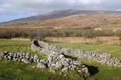 Walled Bridleway.