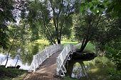 Footbridge Across The Pond