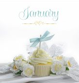 Beautiful White Snow Theme Cupcake With Seasonal Flowers And Decorations For The Month Of January Wi