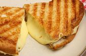 Toasted sandwich with melted cheese.