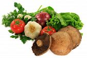 picture of portobello mushroom  - Organic Ingredients  - JPG