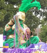 Colorful Mardi Gras Rider