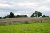 Field With Fence In The Country
