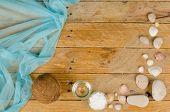 Coconut Sunscreen