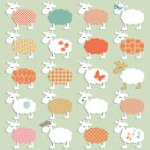 set of different sheeps