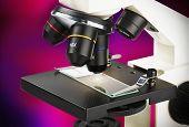 Microscope Lenses Focused On A Specimen