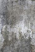 Dirty Cement Wall.