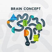 Brain minimal line style infographic banner design, modern colors and flat elements. Business presen