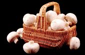 Champignons In A Basket