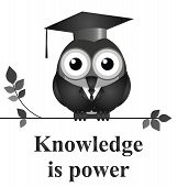 image of academia  - Monochrome knowledge is power message isolated on white background - JPG