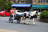 Horse and carriage, Bourton on the Water.