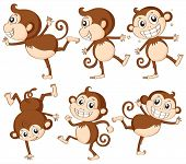 Illustration of monkey set on white