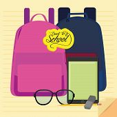 Vector Set Of Stylish Cartoon Different School Related Elements
