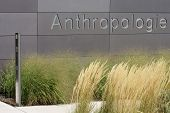 Anthropology University of Mainz