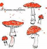 Set of watercolor drawing poisonous mushrooms