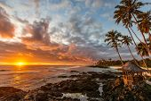 picture of pacific islands  - Sunset on tropical island in the south pacific - JPG