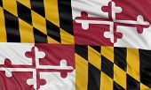 3D Maryland Flag