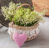 Basket With Lilies Of The Valley (convallaria Majalis) And Heart