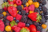 Mixed Berries Up Close