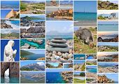 Pictures Of Corsica