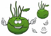 Fresh vegetable kohlrabi cabbage cartoon character