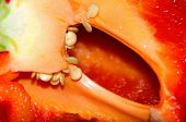 pic of slit  - Detail slit red peppers with seeds inside and juicy pulp - JPG