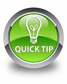Quick Tip (bulb Icon) Glossy Green Round Button