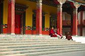 Buddhist Monks Near Karmapa International Buddhist Institute,Delhi,India