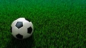 Soccer Ball Standing On Grass Field
