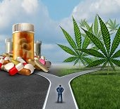 picture of marijuana  - Marijuana medical choice dilemma health care concept as a person standing in front of two paths with one offering traditional medicine and the other option with cannabis - JPG