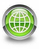 World Icon Glossy Green Round Button